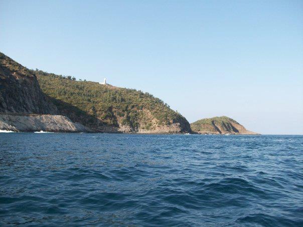 littoral de chetaibi dans chetaibi 1996_3649368487568_1459396804_n